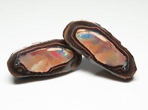 Queensland Boulder Opal 38.70ct Yowah Nut Australian Natural Stone