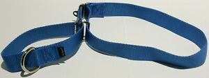 PetSafe Martingale Dog Collar - Royal Blue Large