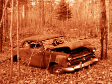 """Abandoned Junk Cars Collection #2 - Canvas Art Poster 18"""" x 24"""""""