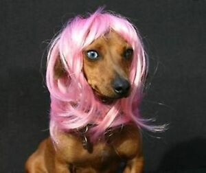 Synthetic Pet Wig Dogs Cats Wig Lovely Dog Cat Supplier Size S Pink TP52