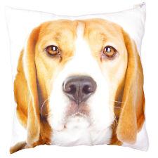 Beagle Dog Cushion 50cm x 50cm
