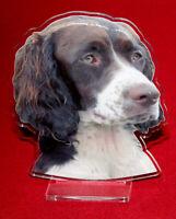 statuette photosculptée 10x15 cm chien epagneul francais 2 dog hund perro cane