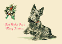 SCOTTISH TERRIER SCOTTIE DOG SINGLE DOG PRINT GREETING CHRISTMAS CARD