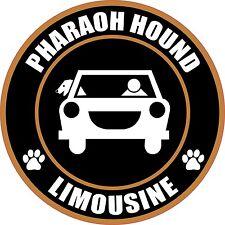 "Limousine Pharaoh Hound 5"" Dog Transport Sticker"