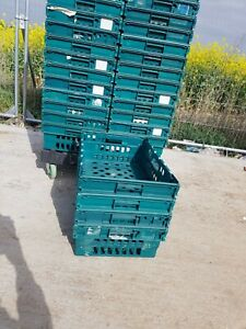 10 x PLASTIC BALE / BAIL ARM TRAY / CRATE / BOX 60-40-20, STORAGE / REMOVAL