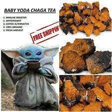 1lb Chaga Tea Organic Mushroom Wild Mandalorian Chunks Siberian Antioxidant bulk