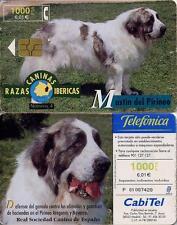 1000 PTA. Fauna Ibérica. Mastin del Pirineo. CabiTel.