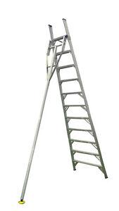 INDALEX Pro Series Aluminium Orchard Ladder 8ft 2.4m