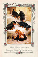 Dachshund Puppy Dogs Carl Reichert  LARGE New Blank Christmas Note Cards