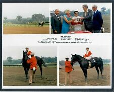 RUFFIAN - 1974 SPINAWAY STAKES 8X10 HORSE RACING PHOTO COLLAGE!
