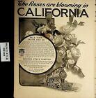 1904 Roses Blooming California Travel Train Sebastian Vintage Print Ad 5093