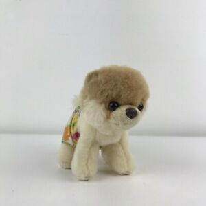 Gund Itty Bitty Boo The Dog In Bathing Suit / Shorts Plush Soft Toy Pomeranian