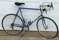 "Bianchi Road Bike Blue 12 Speed Foderi Forcella Columbus 1990's ? Ambrosio 24.5"""