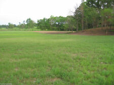 Tifton 9 Bahia ( Certified ) Grass Seeds 20 Lbs.