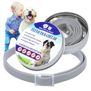 Flea and Tick Collar for Large Dogs Cat Over18lbs Insect Killer Prevent 8 Months
