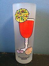 """COZUMEL MEXICO 6.5"""" Frosted Drinking Glass w/ SEX ON THE BEACH RECIPE Cocktail"""