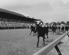 1977 Triple Crown Champ SEATTLE SLEW Glossy 8x10 Photo Jean Cruguet Poster Print
