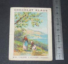 CHROMO 1890-1905 CHOCOLAT KLAUS LES ARBRES FRUITIERS OLIVIER OLIVE