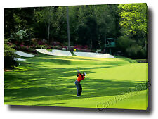 TIGER WOODS CANVAS ART PRINT POSTER PHOTO GOLF AMEN CORNER THE MASTERS