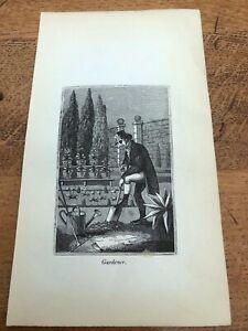 1835 woodcut print ( english trades )  gardener !