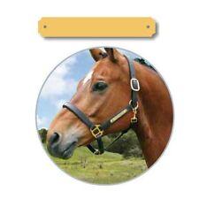 Plaque de cheval avec gravure moyen intérieur gerunded pour Halfter,Mors,Selle