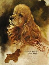 Cocker Spaniel - Vintage Dog Art Print - Poortvliet