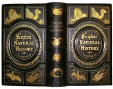 1877 Bible Animals Illustrated Science Natural History Antique Birds Reptiles &C