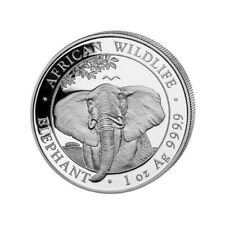 SOMALIE 100 Shillings Argent 1 Once Elephant 2021