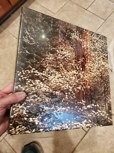 Springbok Puzzle 1972 Dogwood Trees 2053 Photo By Richard Kauffman