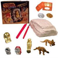 Dinosaur Excavation Kit Archaeology Digging up Fossils Skeleton Kids Funny Toy