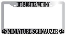Chrome License Plate Frame Life Is Better With My Miniature Schnauzer (Paws) 471