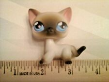 Littlest Pet Shop Lps Black and white Siamese Cat blue eyes 2005