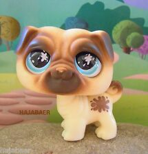 ●★ ღ Littlest Pet Shop * chien BALAIS Dog Pug #623 * Realistic Eyes ღ ★● RAR