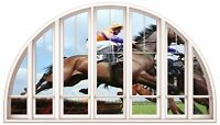 Huge 3D Arched Window Horse Racing View Wall Stickers Mural Film Art Decal 291