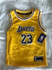 Lebron James Los Angeles Lakers Kids  Size 4  Icon Jersey.  Rare