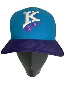 Vintage 90s Charlotte Knights New Era Pro Model Hat Cap USA Made Minor SnapBack