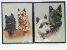 More details for 2 mabel gear prints cairn terrier aberdeen terrier 1940s dog prints