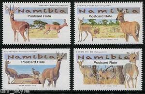 Antelopes 2015 set of 4 stamps mnh  Namibia Steenbok Klipspringer Dik-Dik Duiker