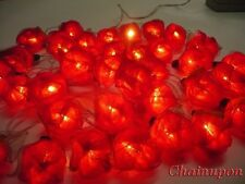 20 RED ROSE FLOWERS STRING PARTY,PATIO,FAIRY,DECOR,BEDROOM,HOME,WEDDING LIGHTS