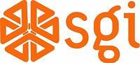 "SGI - Silicon Graphics LOGO VINTAGE - 6.75"" X 3"" - SET OF 2 - ORANGE"