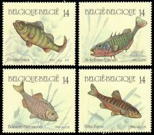 Belgium**Sweet Water FISH-4stamps-1990-MNH-Poissons-Fische-Vissen-Pescados-Pesce