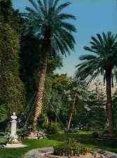 Sicilia. Palermo. Giardino Garibaldi. PZ vintage photochromie, photochrom phot
