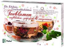 Teeblumen Geschenk-Kollektion, Adventskalender, Kalender, Weihnachtskalender