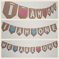First Birthday Bunting Party Decorations Girl boy twin Cake Smash Banner Uk
