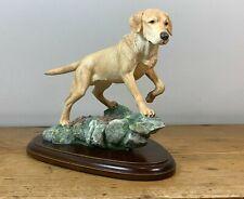 More details for teviotdale labrador ( golden on rock base ) - excellent condiiton.