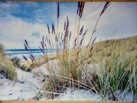 """Fußmatte """"Stranddüne"""" maritimer Fußabtreter 68x45 cm Polyester auf Naturgummi"""