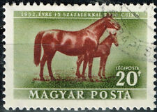 Hungary Farm Animals Horses stamp 1951