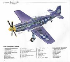TWO WW II COMBAT ART PRINTS NORTH AMERICAN P-51D FIGHTER PLANE WITH SPECS