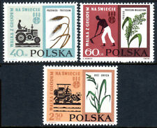 Poland 1112-1114, MNH.FAO Freedom from hunger campaign.Wheat,Millet,Rice,1963