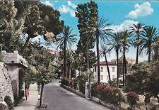 BORDIGHERA - Riviera dei Fiori - Strada Romana e Pino Monumentale 1960